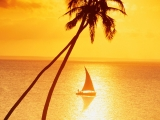 Sunset Sailing in Paradise